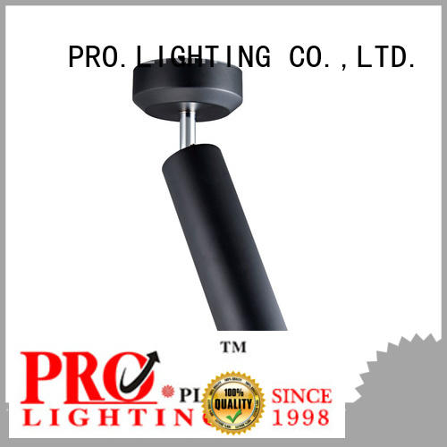300mm mounting pendant lights manufacturer for boutique PRO.Lighting