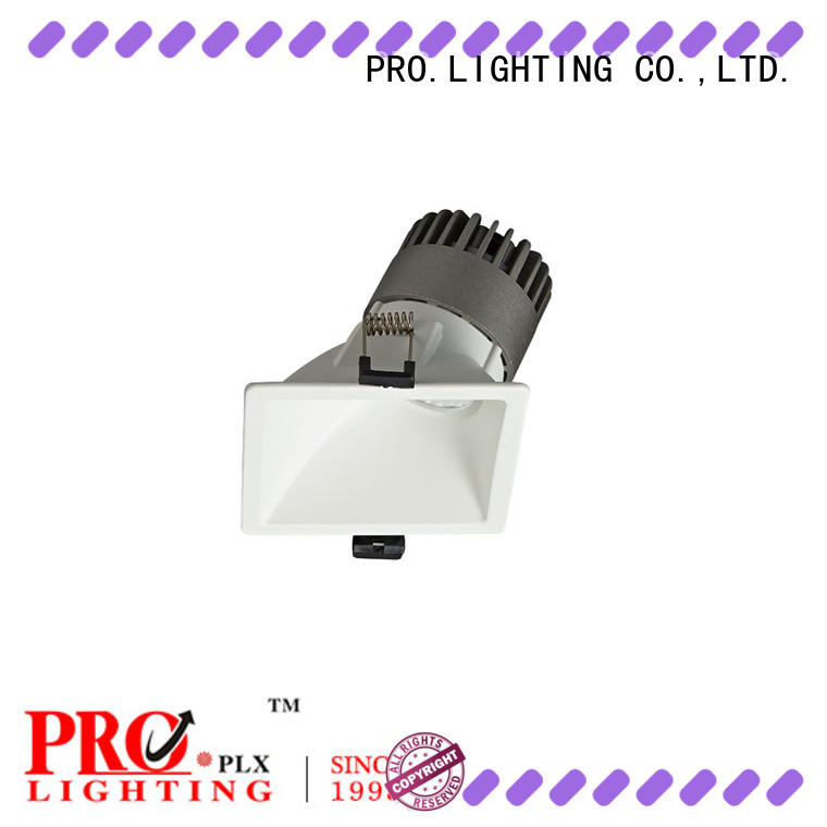 PRO.Lighting sturdy modular spot downlight personalized for stage