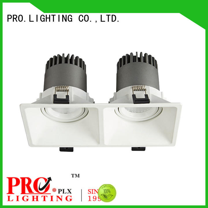 PRO.Lighting quality downlight spot for stage