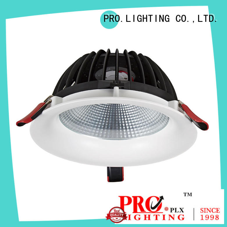 Pro.Lighting Recessed Downlight COB Led Down Light with IP44 Rating 50W 10029N