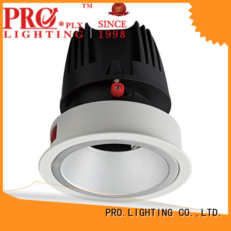 PRO.Lighting light led downlight globes personalized for ballroom