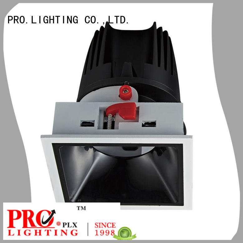 PRO.Lighting antiglare 200mm downlight factory price for restaurant