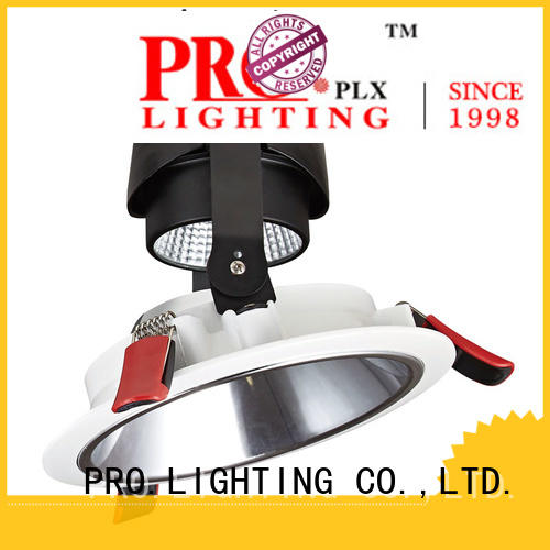 PRO.Lighting 10w wall washer downlight supplier for convention center