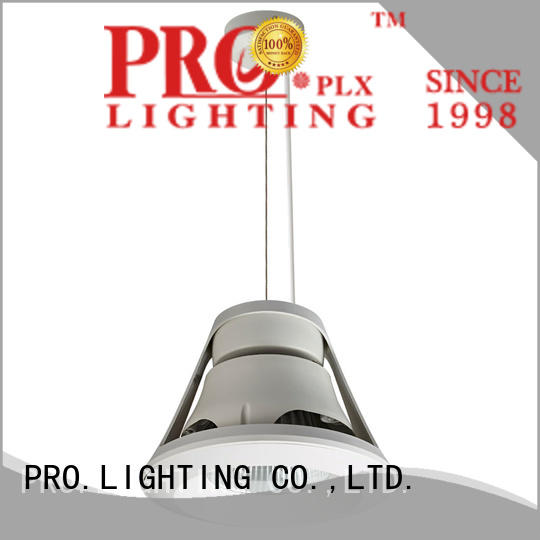 PRO.Lighting reliable plug in pendant light customized for hospital