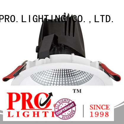 Pro.Lighting Aluminum Recessed Downlight Cob Led Down Light 30W DL6006N
