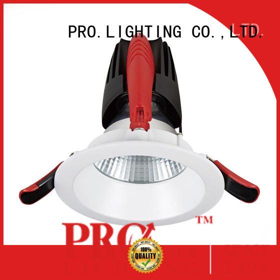 PRO.Lighting stable 12v downlight personalized for restaurant