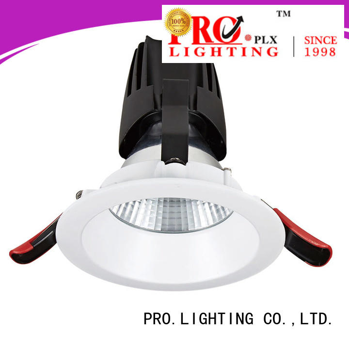 PRO.Lighting sale recessed cob downlight personalized for restaurant