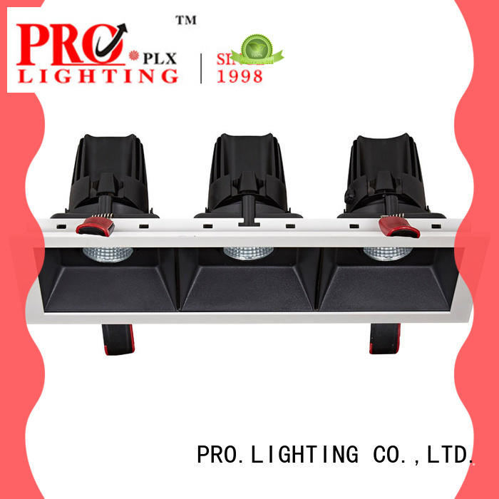 PRO.Lighting hot selling gimbal light fitting customized for ballroom