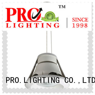 PRO.Lighting 200mm chrome pendant light directly sale for boutique