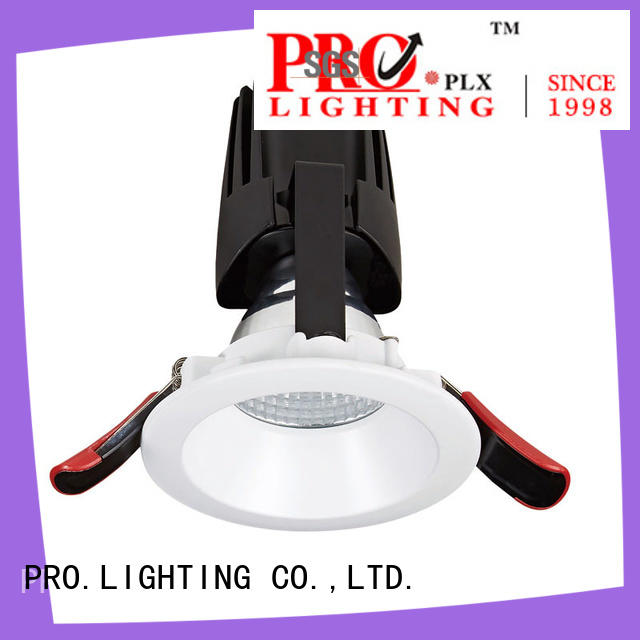 PRO.Lighting professional kitchen downlights personalized for stage